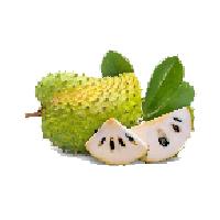 durian-belanda